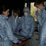 BTEC Students Analysising Crime Scene