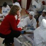 KS3 Teacher CSI Observation