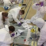 KS2 Pupils Working Scientifically