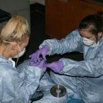 BTEC Crime Scene Examination