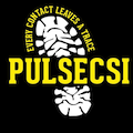 Pulse Education & Business Services Limited